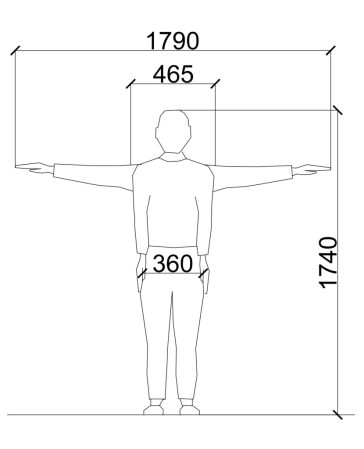 Male Proportions